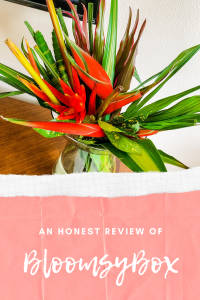 BloomsyBox review Pinterest graphic