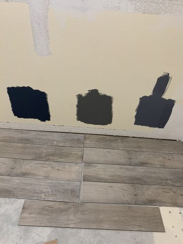 Paint Samples and Flooring